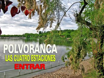 Parque de Polvoranca, Leganés, Madrid.