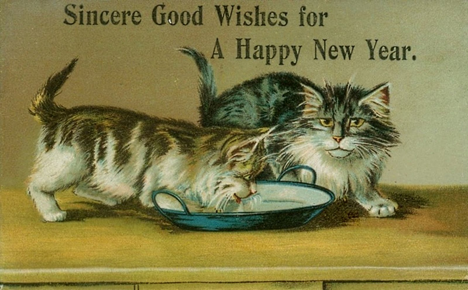 Purring for the Mew Year...