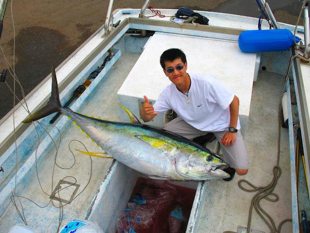 Actinopterygii_Perciformes_Scombridae_Sc