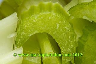 macro photo vegetables