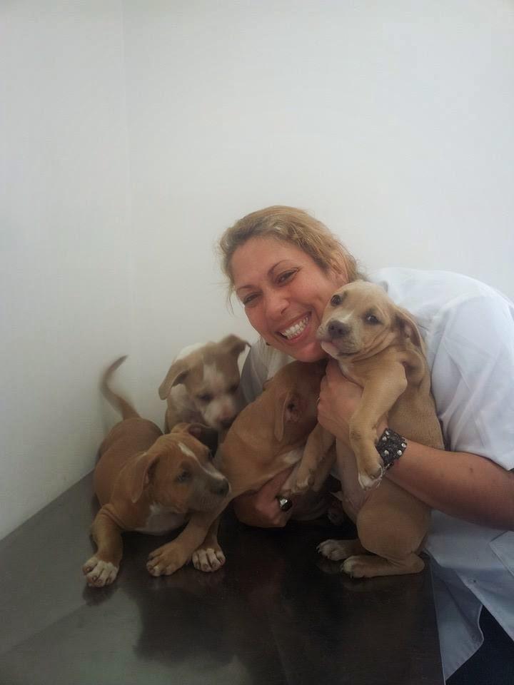 Veterinária Responsável Drª Silvia Barreto