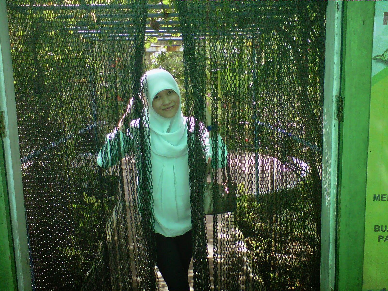 Nazzhyfah's Blog
