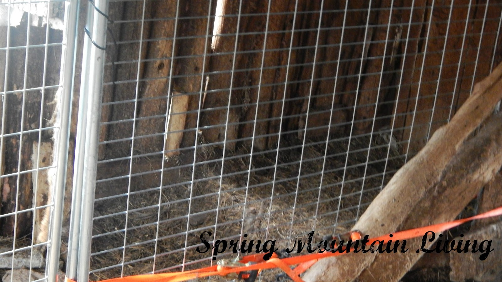 Hubby Used Some Tie Down Straps To Help Secure Of The Cage When Pulled Tight They Work Well For Multiple Applications And Make A Portable
