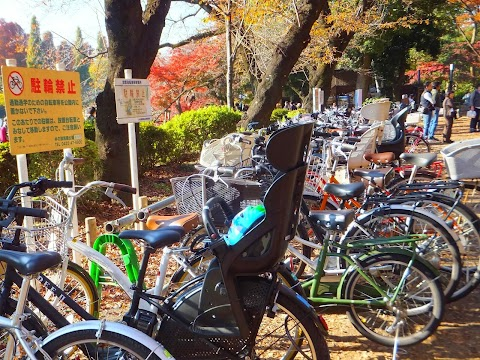 Inokashira Park Declares War on Bicycles (for a few weeks)