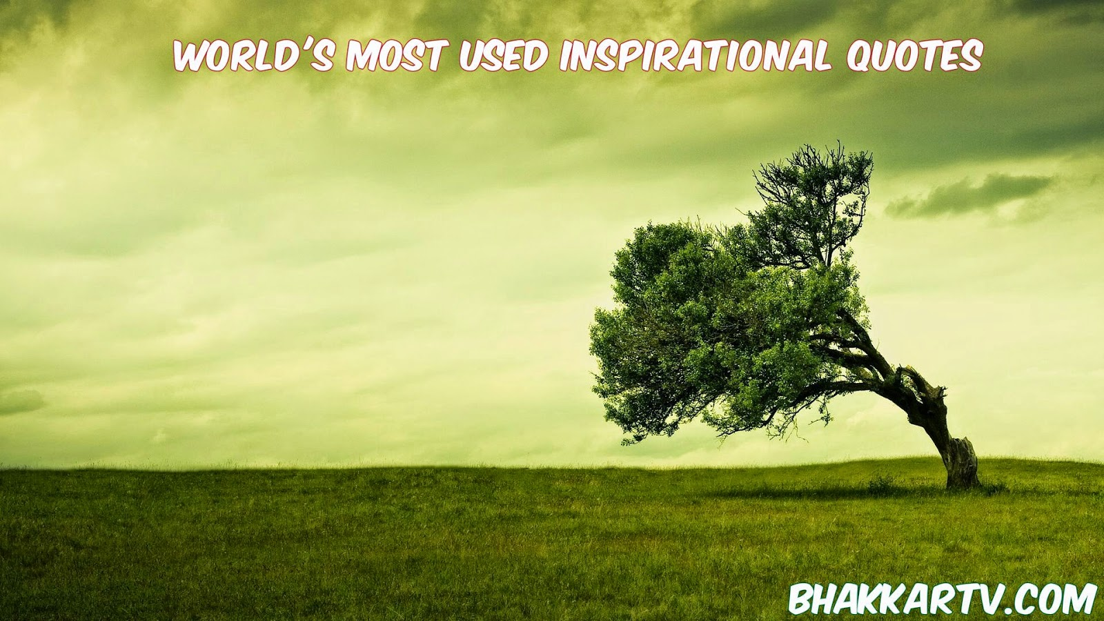 World's Most Used Inspirational Quotes - Bhakkartv.com