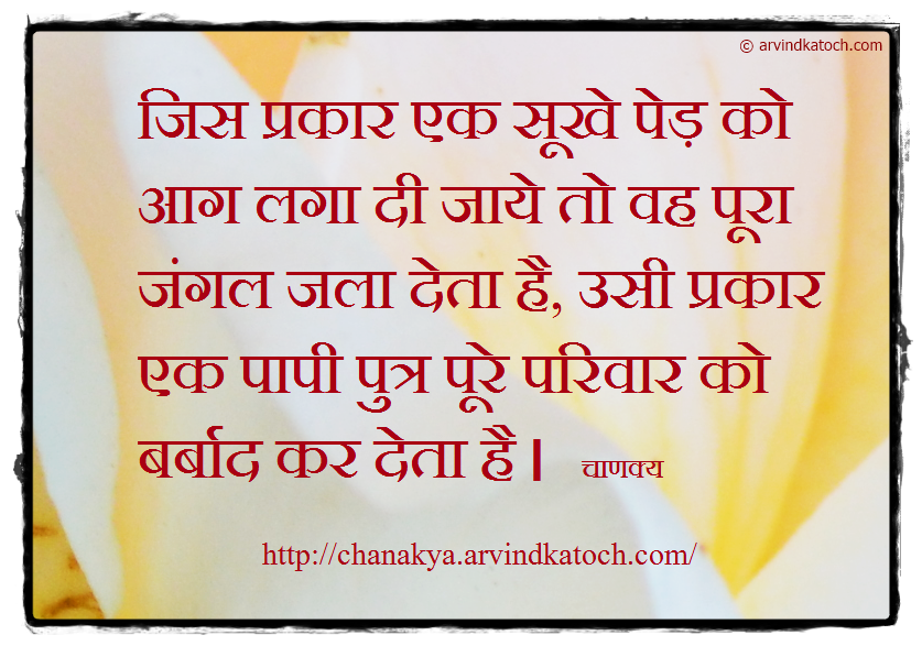 Chanakya, Hindi Thought, Quote, dry Tree, forest, burn, sinner,