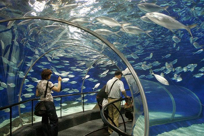 INTERESTING INFO: Biggest aquariums in the world