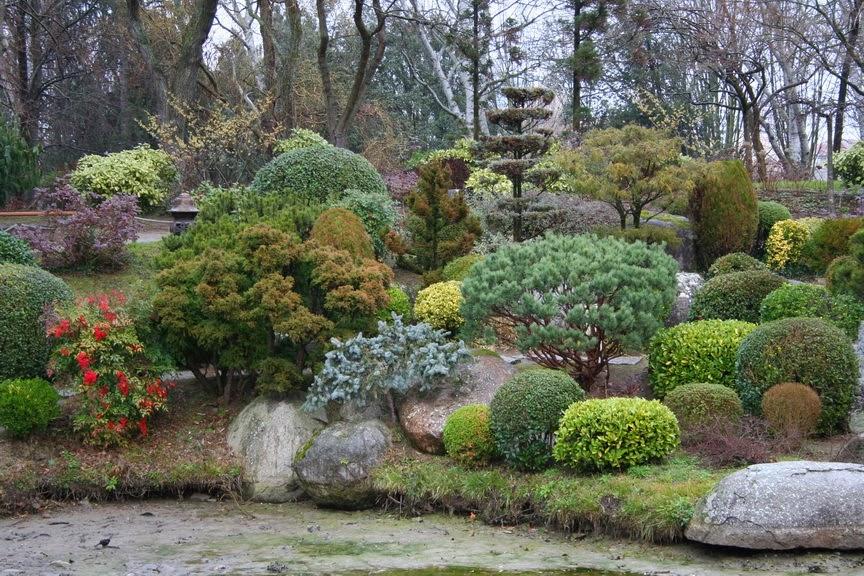 Association la mol ne r sum de l 39 expos sur les jardins for Jardin japonais contemporain