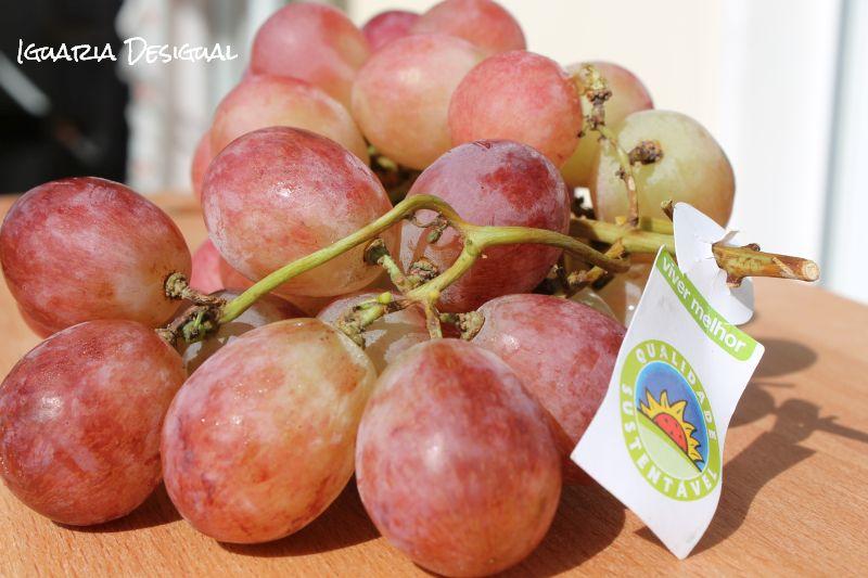Compota de Uvas com Moscatel