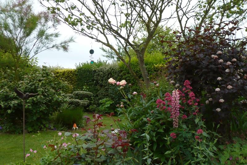 Le jardin de pacalou dernier jour de mai for Tous au jardin