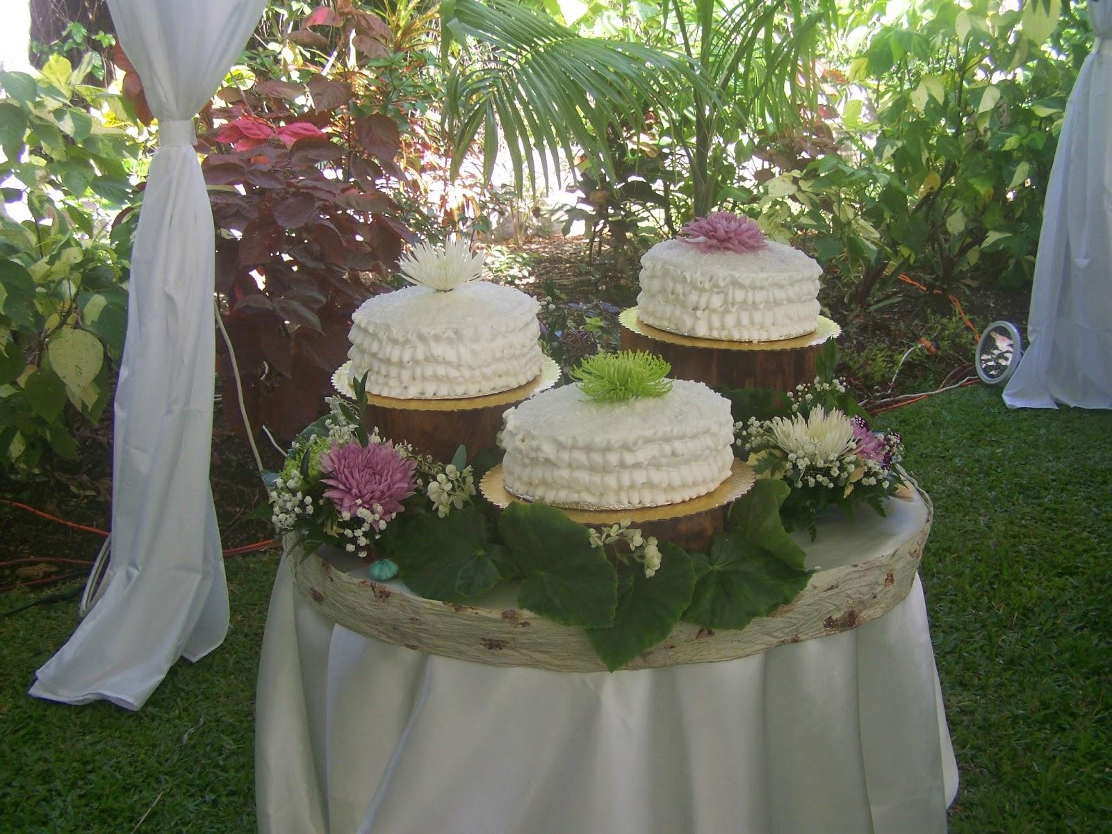 My Rustic Bajan Garden The Wedding Venue