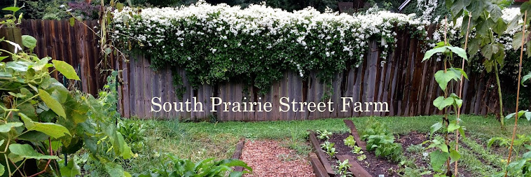 South Prairie Street Farm