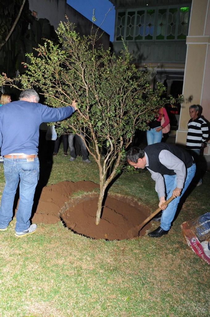 O Secretário de Cultura Wanderley Peres realizou pessoalmente o plantio