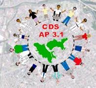 CDS AP 3.1