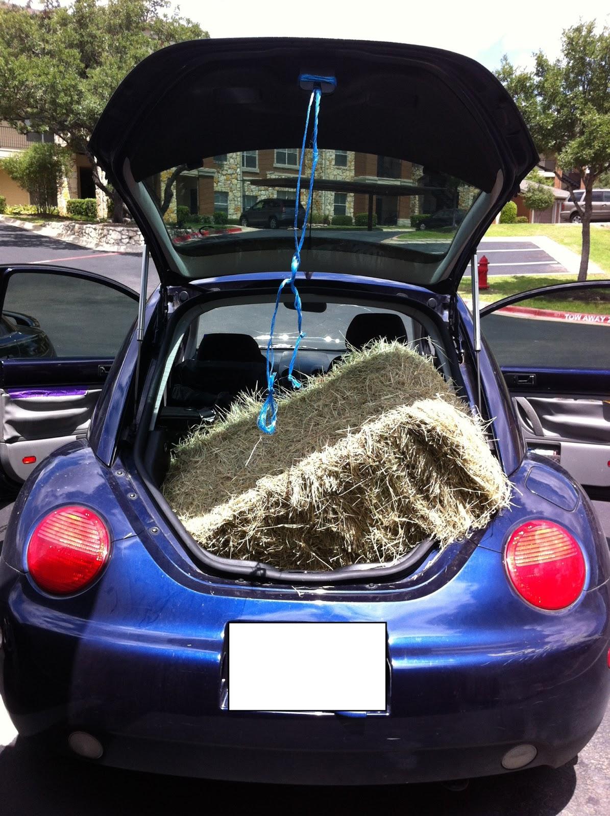 between the rabbit s ears diy interior car door makeover with mod