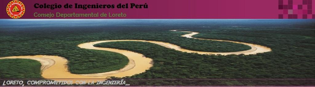 CIP-CD Loreto: Proceso Electoral 2016-2018