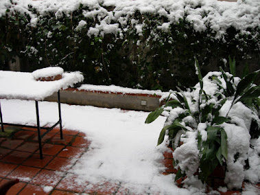 Nuestro patio nevado