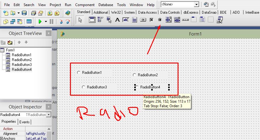 Cara Membuat Multy Host Injek Menggunakan RadioButton Delphi 7