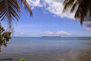 coconut-island-guam