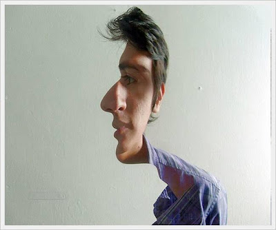 Confused Double Face Optical Illusion