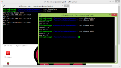 Java Client-Server Socket communication, with option of reading Raspberry Pi's system temperature.