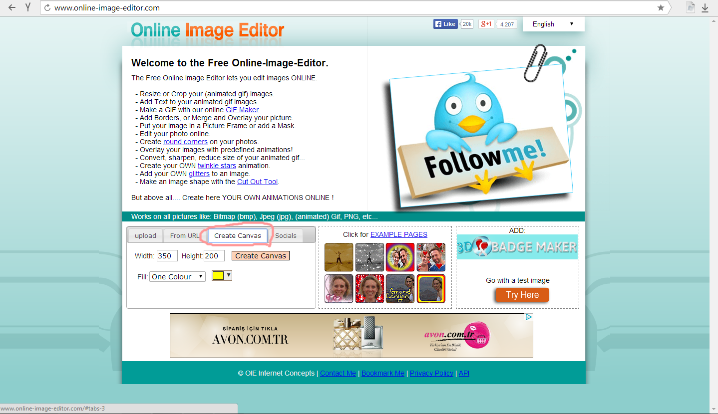 Free, online Image Editor, edit your images online for free!