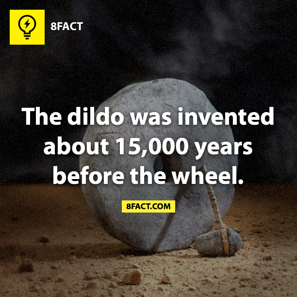 The dildo was invented about 15,000 years before the wheel.
