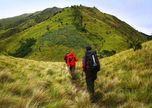7 Gunung Terindah di Indonesia