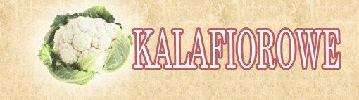 kalafiorowe