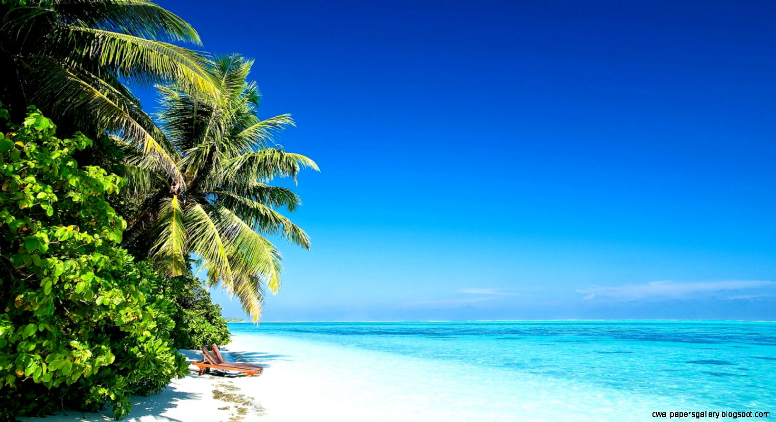 1600x900 Beach Palms Sun Wallpaper