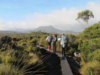 Overland Track boardwalk