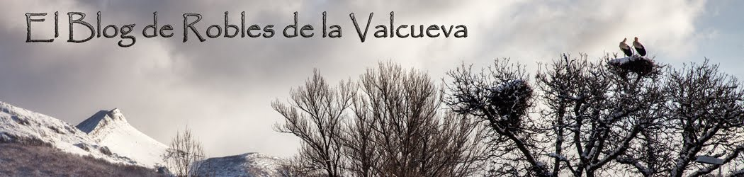 El blog de Robles de la Valcueva