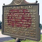 Hemp in KY