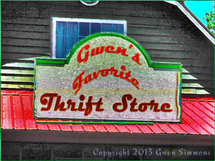 My Favorite Thrift Shop