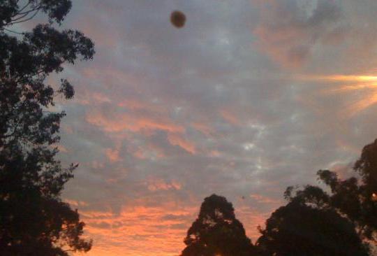 Ufo di Sydney Australia