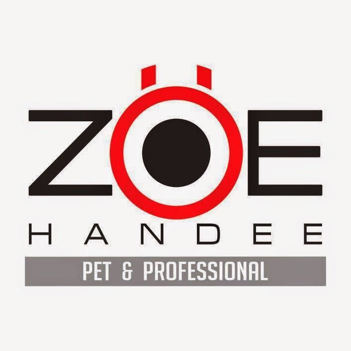 ZOE HANDEE