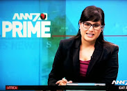 ANN7: Riddled with mistakes which defy belief