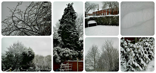 Farnworth Snow Trees Bench Garden