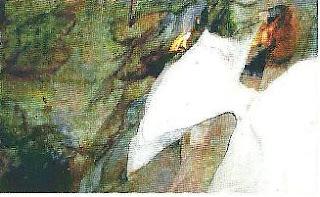Sala del Aguila-Cueva del Tesoro- en ella destaca formación pétrica en forma de águila y otras curiosas formaciones.Se pueden observar pinturas rupestres, un caballo y un pez.