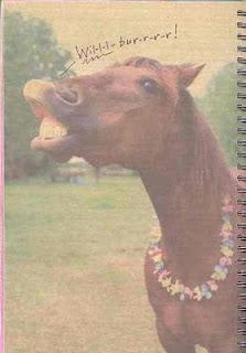 smash book horse