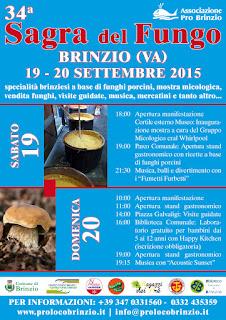 Sagra del Fungo brinzio varese 2015