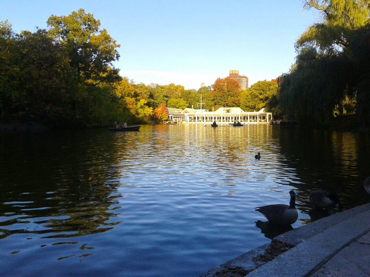 imagen de Embarcadero en lago de Central Park, Nueva York