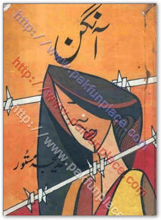 Aangan novel by Khadija Mastoor pdf.