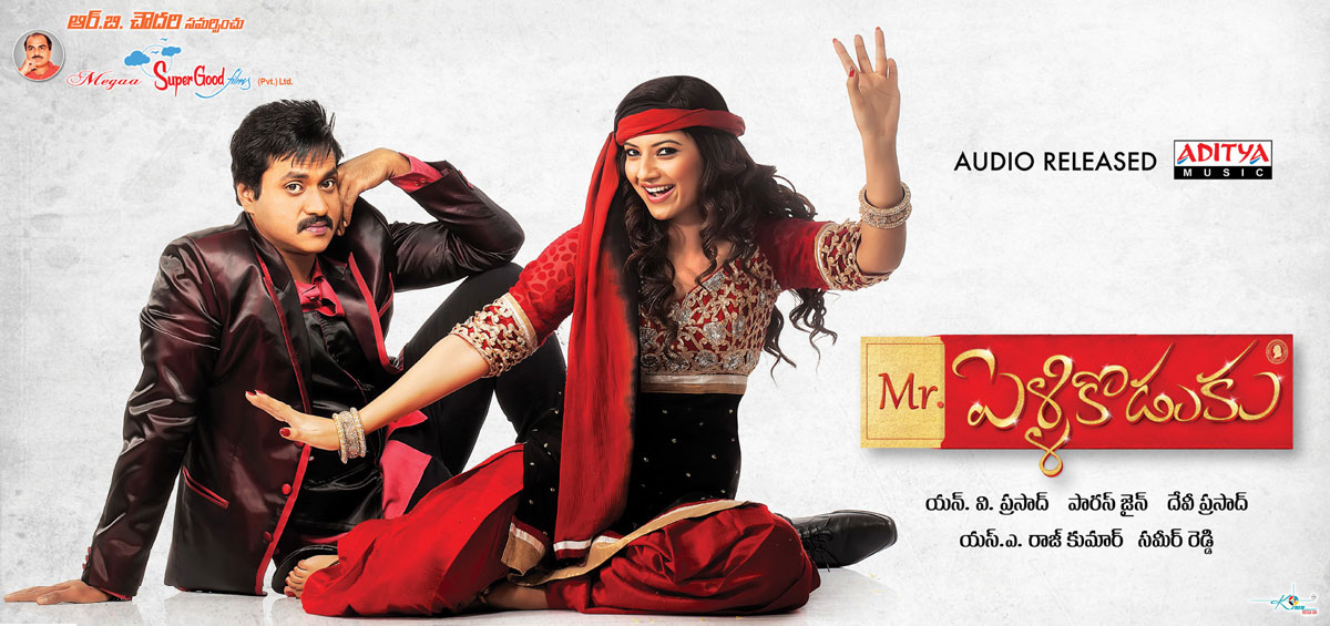 Mr Pellikoduku Audio Released Posters