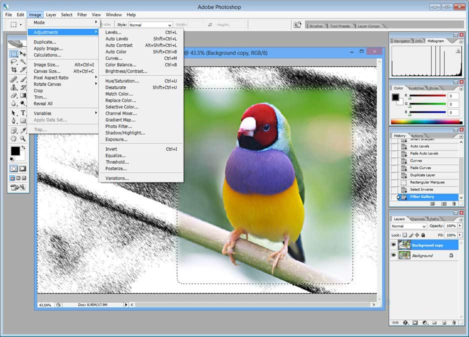 Adobe photoshop cs2 with key free download