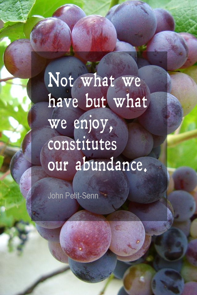 visual quote - image quotation for ABUNDANCE - Not what we have but what we enjoy, constitutes our abundance. - John Petit-Senn