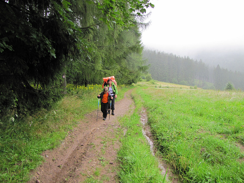 Ponad przełęczą pod Lemešnou (800 m n.p.m.).