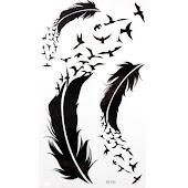 Una simple pluma...