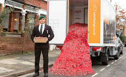 Sainsbury's Blazing Trail With Poppy Appeal For Charity