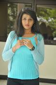 Shilpa Reddy glam pics-thumbnail-13